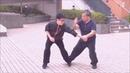 CK Taichi Mantis Ling Bung Bo