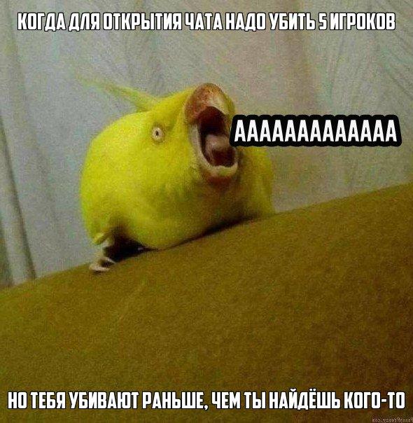 kGmQbocwJtw.jpg