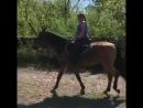 Сяду я верхом на коня...
