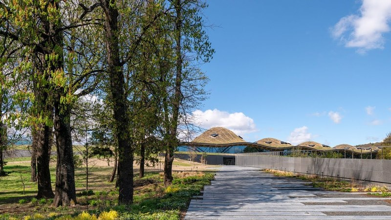 Rolling wildflower roof covers Rogers Stirk Harbour Partners-designed Scottish distillery
