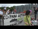 Активісти висадили саджанці на місці зрубаних дерев в Саду ім. Т. Шевченка