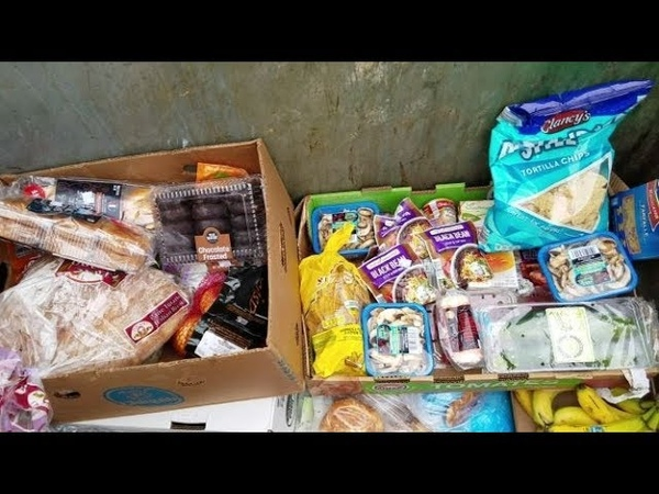DUMPSTER DIVING ALDI DAILY VIDEO 44
