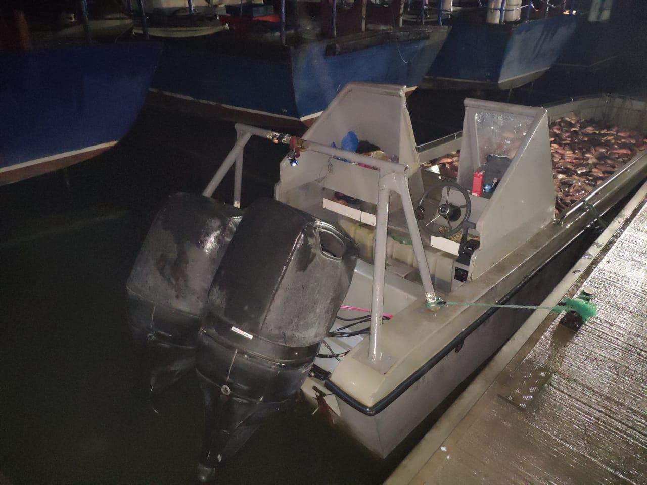 В Таганрогском заливе задержали браконьеров с незаконно добытой рыбой общим весом более 3,5 тонн