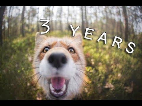 I'm Born To Run | Freya 3 years |