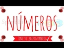 Learn the numbers in Spanish | Los números en Español | Learn Spanish