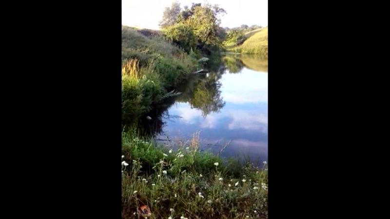 Никитовка самый маленький ставок