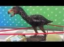 Выставка динозавров в ТРК Ривьера