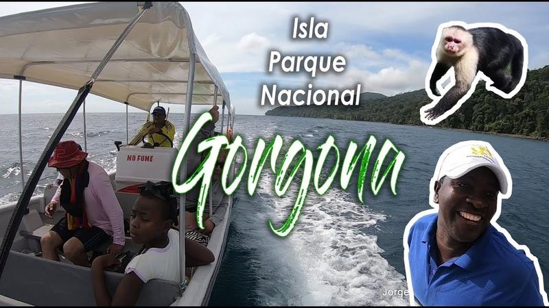 Isla GORGONA Pacifico Colombiano