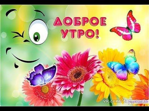 Доброе утро С добрым утром и хорошим днем Позитив на весь день Прикольное пожелание