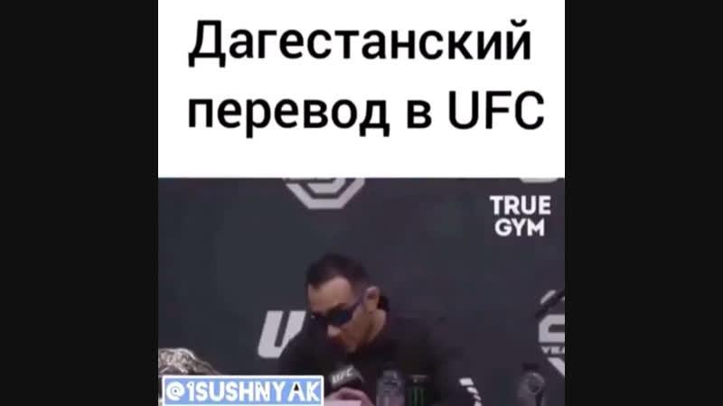 Дагестанский перевод UFC