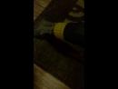 Моющий пылесос Karcher puzzy10 1