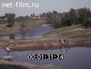 1984г колхоз Ленинская искра Ядринский район Чувашия
