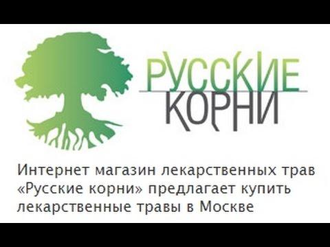 Боровая матка - применение и показания. Купить траву боровая матка в фито-аптеке «Русские корни»