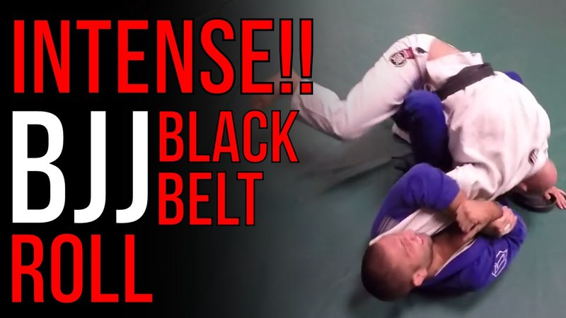 INTENSE! BJJ Black Belts Sparring Formiga VS Rafa