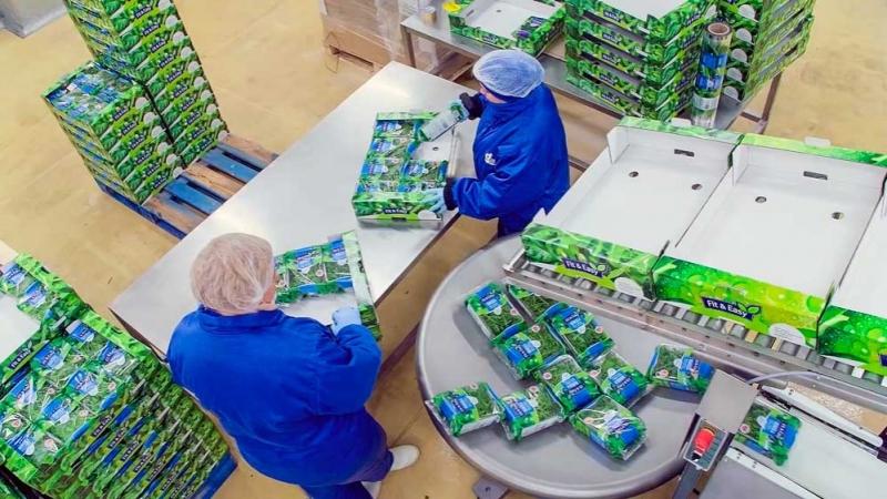Работа в Польше на Green Factory