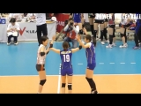 This is Why We Love Volleyball - Beautiful Volleyball Videos (HD)