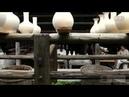 The procedure of porcelain making in Jingdezhen City mp4
