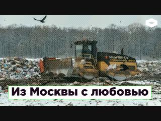 Из Москвы с любовью: как столичный мусор отравит поморскую тайгу   ROMB