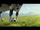 Веселая корова_VIDEOMEG