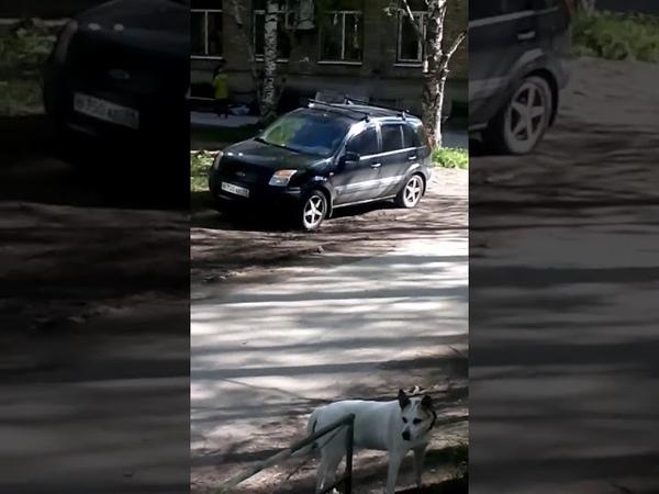 В Сыктывкаре из окна дома выпали мужчина и женщина