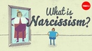 The psychology of narcissism W Keith Campbell