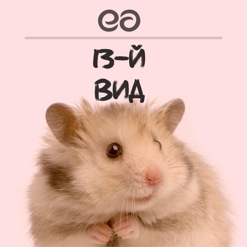Алексей Ефименко   Чернигов