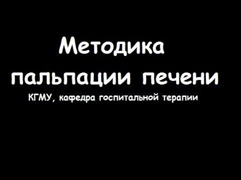 Методика пальпации печени по Образцову-Стражеско - meduniver.com
