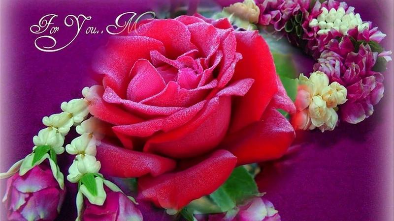 ** For You Mom ** - Giovanni Marradi
