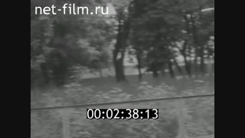 Документальный фильм о городошном спорте и И П Павлов