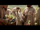 2014-01-028-laborers-in-the-vineyard-720p-rus.mp4