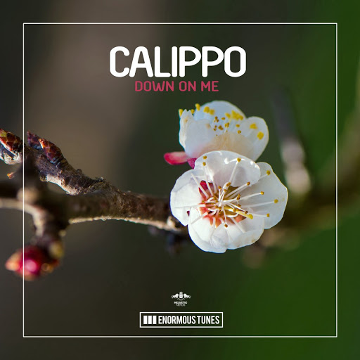 Calippo альбом Down on Me