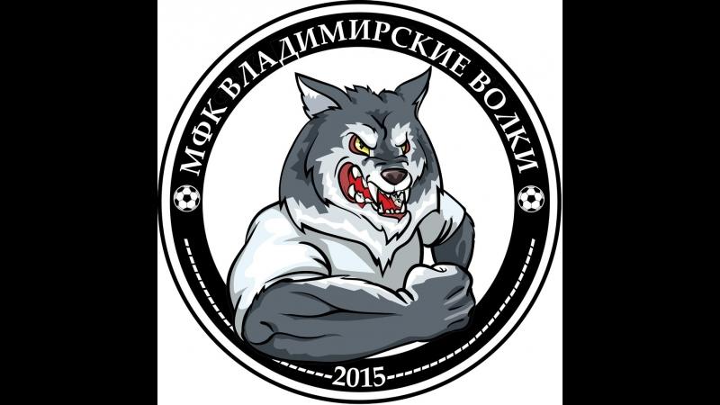 Владимирские волки-Монако