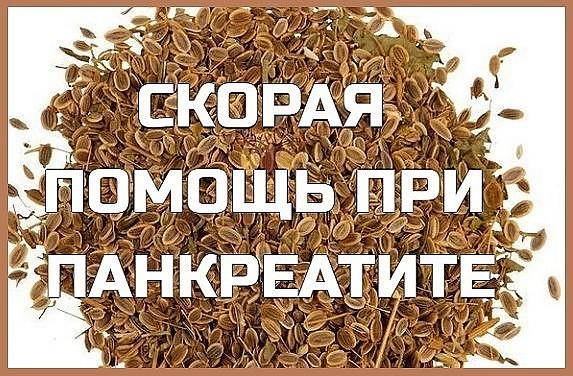 В домашних условиях лечить поджелудочную железу народными средствами можно, к примеру, всем известным укропом или его семенами.