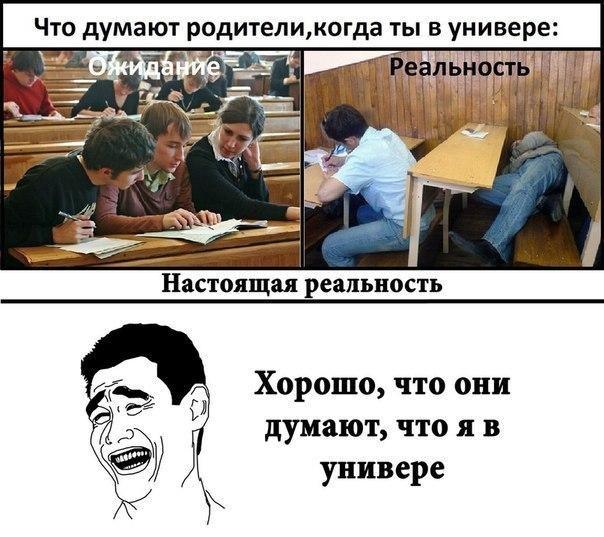 Смешные картинки про университет