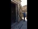 Необычные ворота