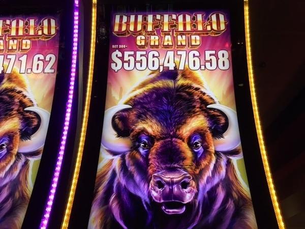 Buffalo Grand Slot Super Jackpot Handpay -Biggest Buffalo Win on YouTube -