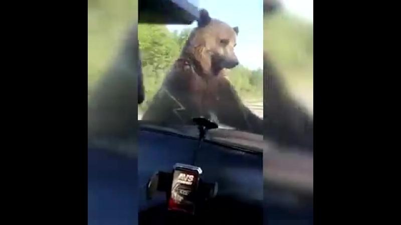Якутский автостопщик