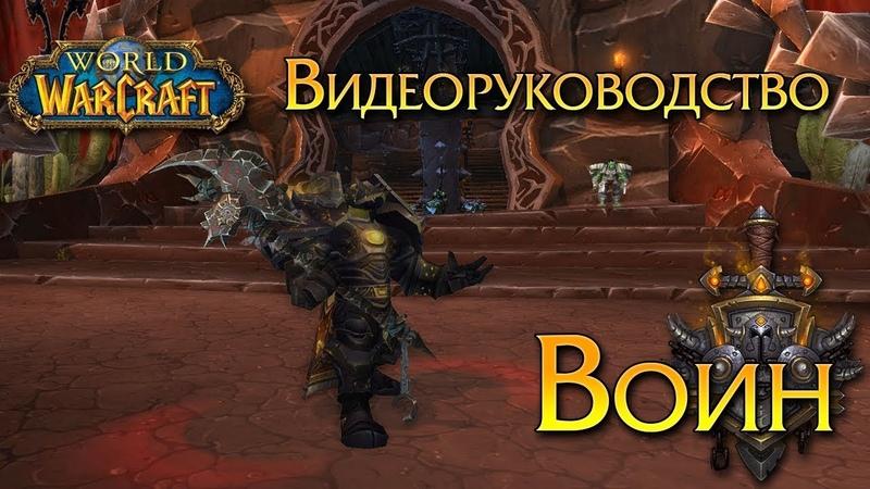 Видеоруководство Воин(На Русском!)