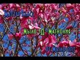 Мастер класс от Мыло опт Мыло 3D - Магнолия Soap crafting - Magnolia
