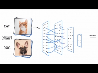 Neural Network Prototyping On the Go