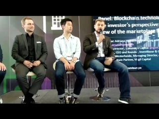 Blockchain technology from the investors perspective: A VC view of the marketplace
