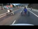 Vídeo mostra cavalo caindo durante racha de charretes em Mairinque