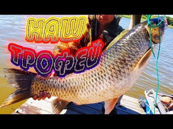 Наша трофейная рыба