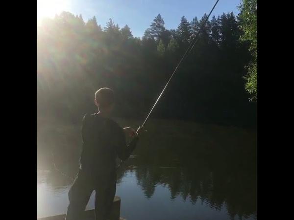 Смотреть до конца 👍😂Давай Пал Палыч Давай 1 Рыбалка удалась Прекрасно отдохнули 👍🤓