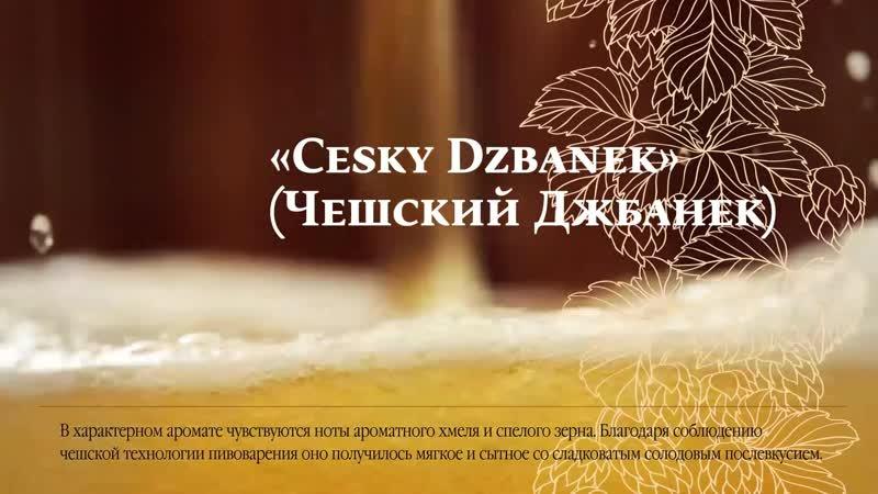 Чешский Джбанек (Томское Пиво)
