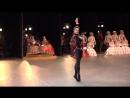 00.02.2016 Don Quixote Act 3, Nina Kaptsova, Artem Ovcharenko - Нина Капцова, Артём Овчаренко в 3 акте Дон Кихота - stage video