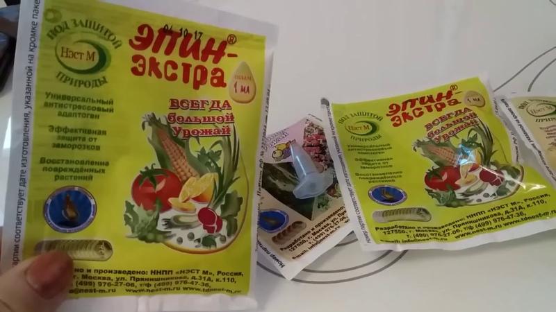 Эпин и циркон использование для посева, выращивания рассады и полива комнатных цветов.
