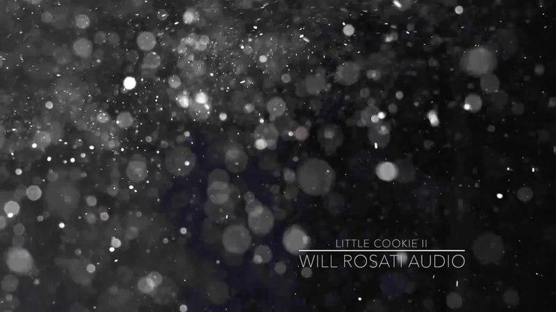 Will Rosati - Little Cookie II