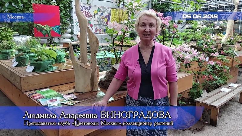 Клуб Цветоводы Москвы