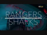 NHL 2018-2019 / RS / 30.10.2018 / New York Rangers vs San Jose Sharks